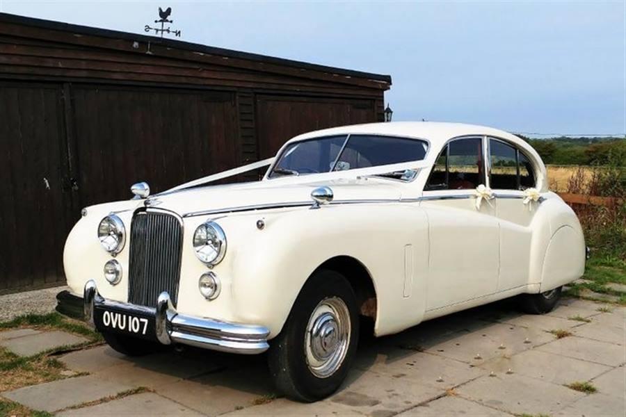 Jaguar 1954 Mk7