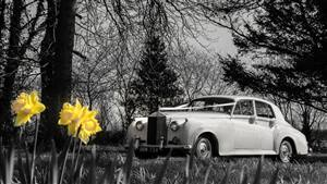 Rolls Royce Silver Cloud - 1958 Wedding car. Click for more information.