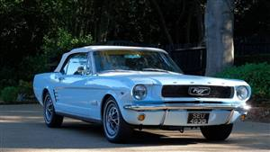 Ford 1966 Mustang  Wedding car. Click for more information.