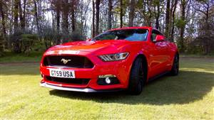 Ford Mustang GT 5.0 V8 Wedding car. Click for more information.